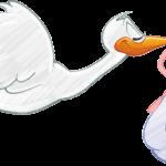 保田圭ちゃん妊活の末、ブログで旦那さまと妊娠検査薬画像!その賛否!